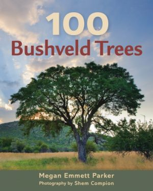 100 Bushveld Trees – New guide to the most memorable trees in the Bushveld of South Africa