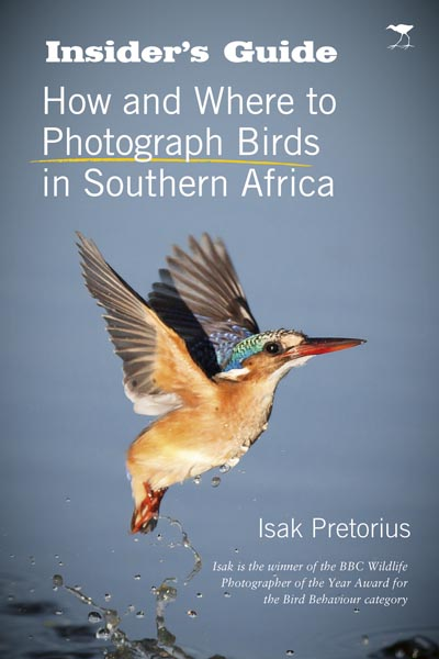 Insider's Guide to Bird Photography in Southern Africa