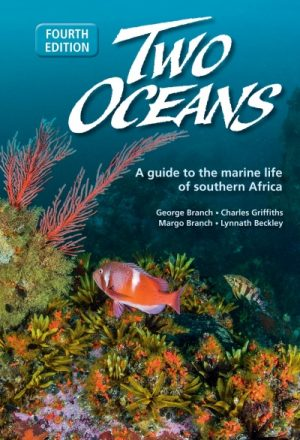 Two Oceans A Guide to the Marine Life of Southern Africa  JP15