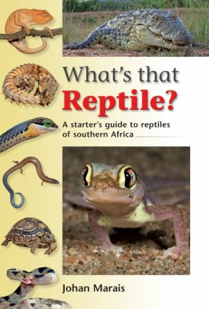 What's that Reptile?