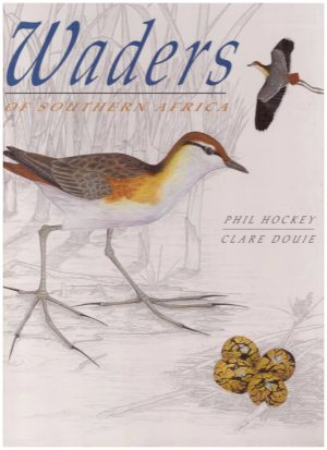 Waders of Southern Africa  Hard Cover (10/10) HB13