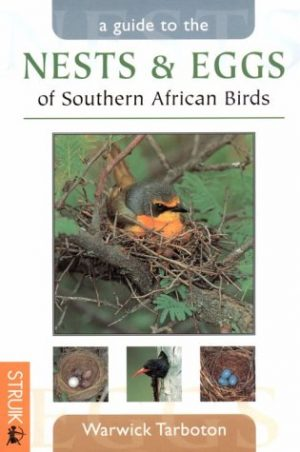 Nest & Eggs of South Africa (8/10)  HB16