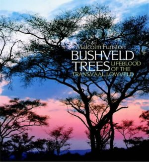 Bushveld Trees Lifeblood of the Transvaal Lowveld (8/10)  JP14