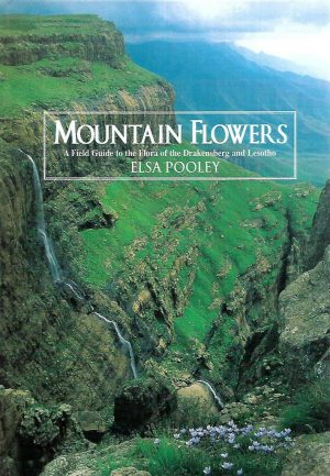 Mountain Flowers: A field guide to the flora of the Drakensburg and Lesotho