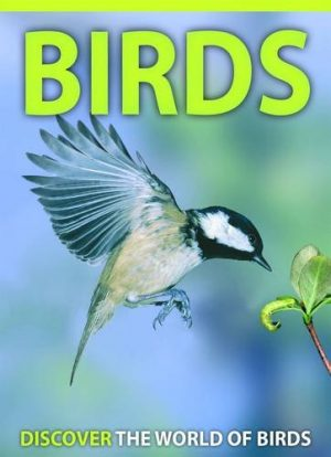 Birds – Discover the World of Birds  JH