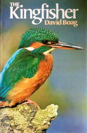 The Kingfishers GR61