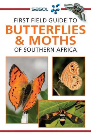 First Field Guide to Butterflies & Moths of Southern Africa