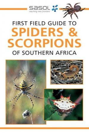 Sasol: First Field Guide to Spiders & Scorpions of Southern Africa