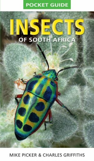 Pocket Guide to the Insects of South Africa