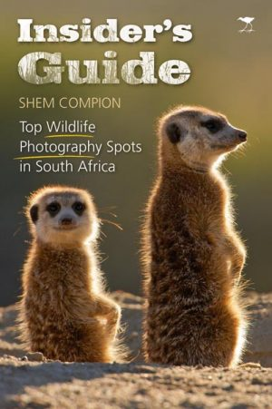 Insider's Guide: Top wildlife photography spots in South Africa