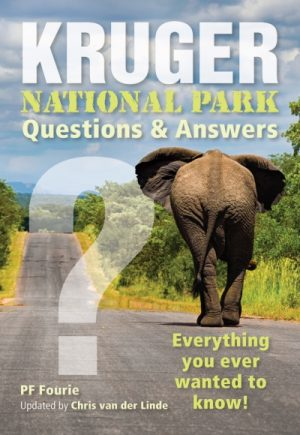 Kruger National Park – Questions and Answers