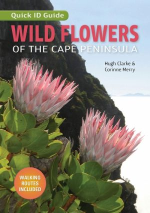 Quick ID Guide: Wild Flowers of the Cape Peninsula