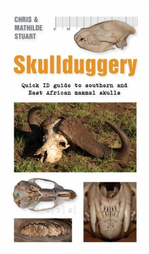 Skullduggery: Quick ID guide to Southern and East African mammal skulls