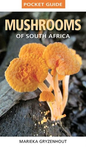 Pocket Guide Mushrooms of South Africa (New Edition)